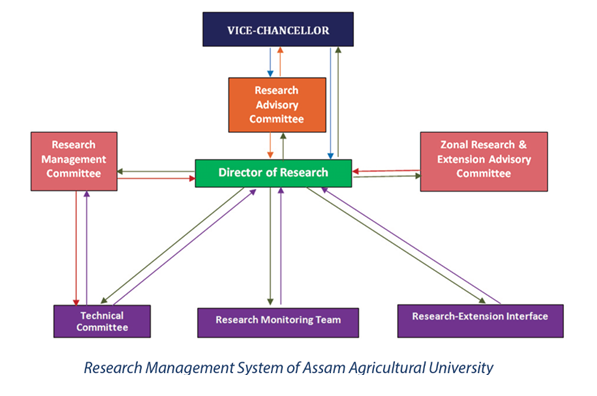 AAU | Research | Directorates & Network